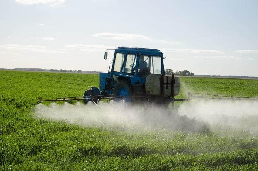 Monsanto mora bolniku z rakom zaradi svojih herbicidov plačati 289 milijonov dolarjev odškodnine 2